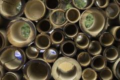 Bambou photos stock