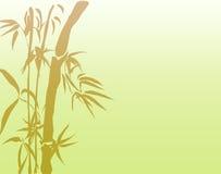 bambou chanceux Image libre de droits