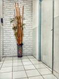 bambou dans le couloir photos stock