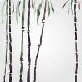 Bambou dans le style chinois Photo libre de droits