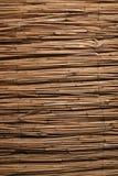 bambou de fond Image libre de droits