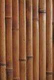 bambou de fond Photographie stock libre de droits