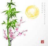 Bambou, le soleil, Sakura dans la fleur Photo libre de droits