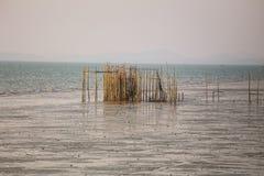 Bambou, mer Photo libre de droits