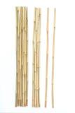 Bambou sur le fond blanc Photos libres de droits