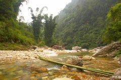 Bambu överbryggar Royaltyfria Foton