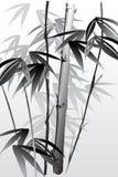 bambu 05 Royaltyfria Foton