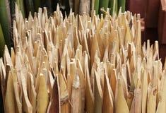 Bambu Royaltyfri Bild