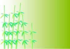 bambu Royaltyfri Fotografi