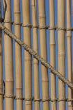 Bambu Fotografia de Stock Royalty Free