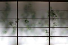Bambu atrás da tela foto de stock