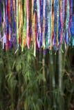 Bambu brasileiro colorido Forest Jungle das fitas do desejo do carnaval fotos de stock