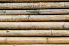 Bambu da natureza que é arranjado nas fileiras para pavimentar para o fundo fotografia de stock royalty free