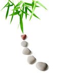 Bambu e pedras Imagens de Stock Royalty Free