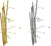 Bambu em um vento Fotos de Stock