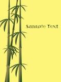 bambu för 3 bakgrund Arkivfoton