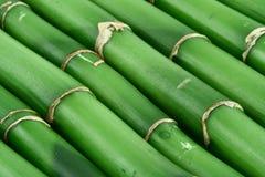 bambu för 3 bakgrund arkivbilder