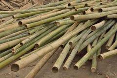Bambu för konstruktion. Arkivbilder