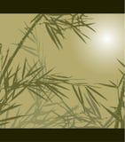 Bambu, ilustração do vetor Fotografia de Stock