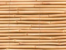 Bambu natural Foto de Stock