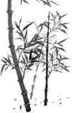 Bambu o mais forrest ilustração royalty free