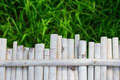 Bambu- och risfältbakgrund Royaltyfri Fotografi
