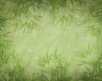 Bambu på gammal grungepapperstextur Arkivfoto