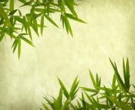 Bambu på gammal grungepapperstextur Arkivfoton