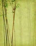 Bambu på gammalt grungeantikvitetpapper Royaltyfria Foton