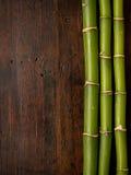 Bambu på wood bakgrund royaltyfria foton