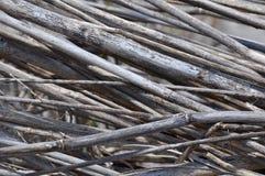 Bambu: Secado acima nas camadas Foto de Stock Royalty Free
