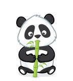 bambu som äter pandaen Arkivfoto
