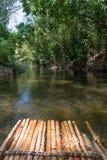 Bambu som rafting i grönt tropiskt landskap Arkivfoto