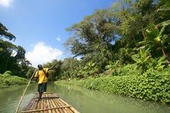 Bambu som Rafting på Martha Brae River i Jamaica Arkivfoton