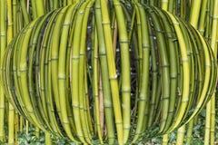 Bambu sphered imagens de stock
