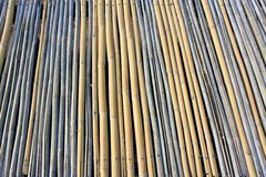 Bambu, textura Fotografia de Stock Royalty Free