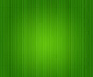 Bambu texturerar Royaltyfria Bilder