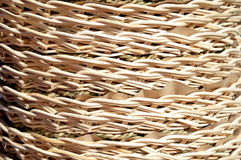 Bambu texturerar Royaltyfri Foto