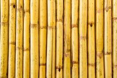 Bambu texturerar Arkivbild
