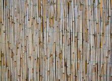 Bambu velho/textura de lingüeta imagens de stock