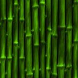 Bambu verde ilustração stock