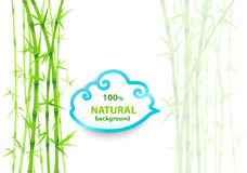 Bambuasiatbakgrund Arkivfoton