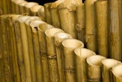 Bambubakgrund. Arkivfoto