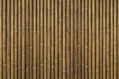 Bambubakgrund Arkivbilder