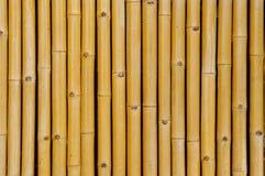 Bambubakgrund Royaltyfri Foto
