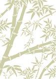 Bambubakgrund Royaltyfri Illustrationer