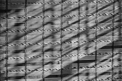 Bambubakgrund i svartvitt Royaltyfri Foto