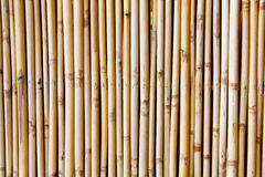 Bambubakgrund i vertikal linje Royaltyfri Foto