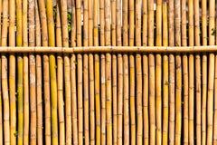 Bambubakgrund, Louangphabang, Laos Närbild royaltyfri foto