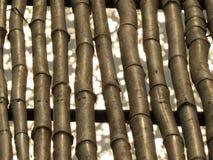 Bambubakgrunden Fotografering för Bildbyråer